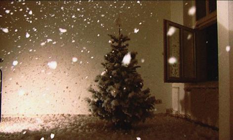 Four Seasons, Still from Video, 2009
