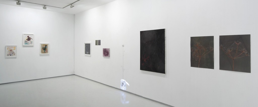 Misunderstood, Exhibition view, Noga Gallery of Contemporary Art, 2012