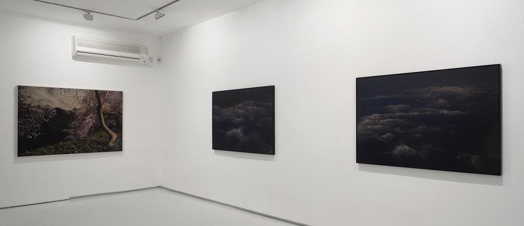 Falling Petals, Exhibition view, Noga Gallery of Contemporary Art, 2011