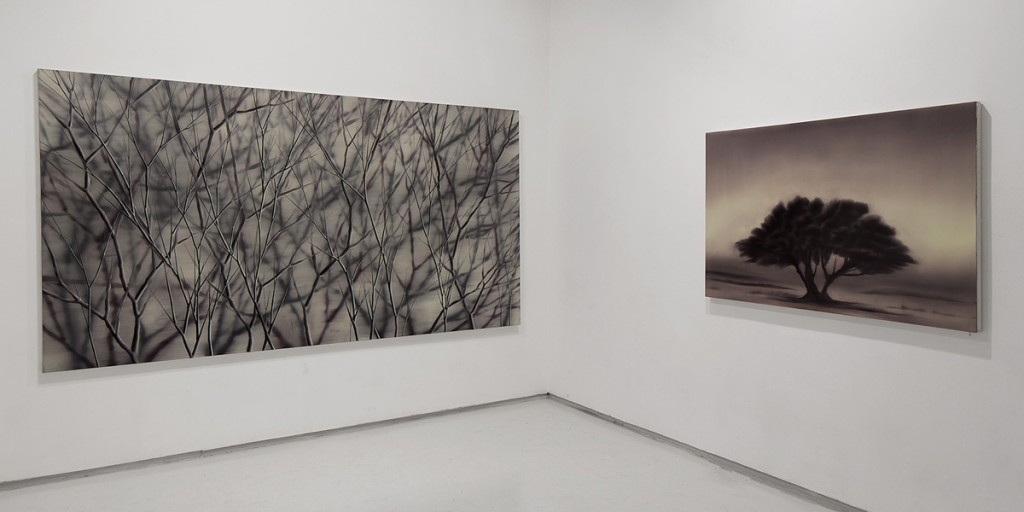 Ash Dreamer, Exhibition view, Noga Gallery of Contemporary Art, 2014