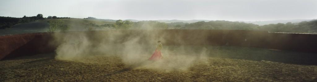 Emergence 1, Archival Ink Print, 50x192 cm, 2012