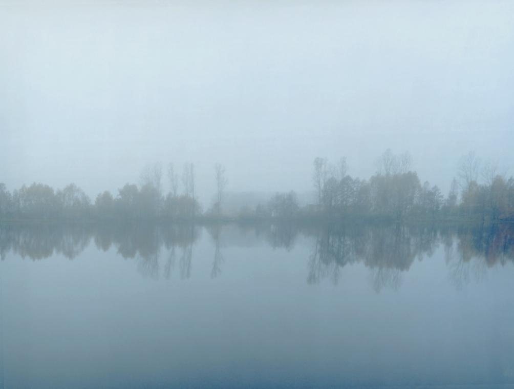 Swamp 02, 120x150cm, 2008