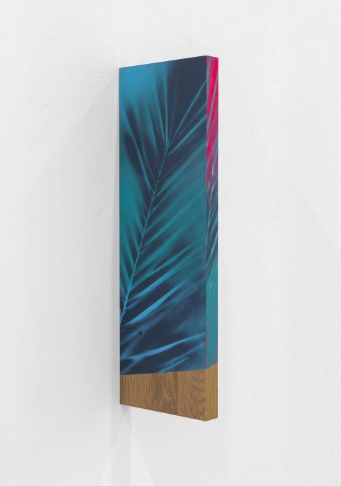 Vertical, 2018, Spray paint on Wooden Shelf, 60x20x3cm