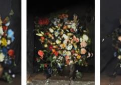 Noga Gallery גלריה נגא   Ori Gersht Artist Profile, Bio