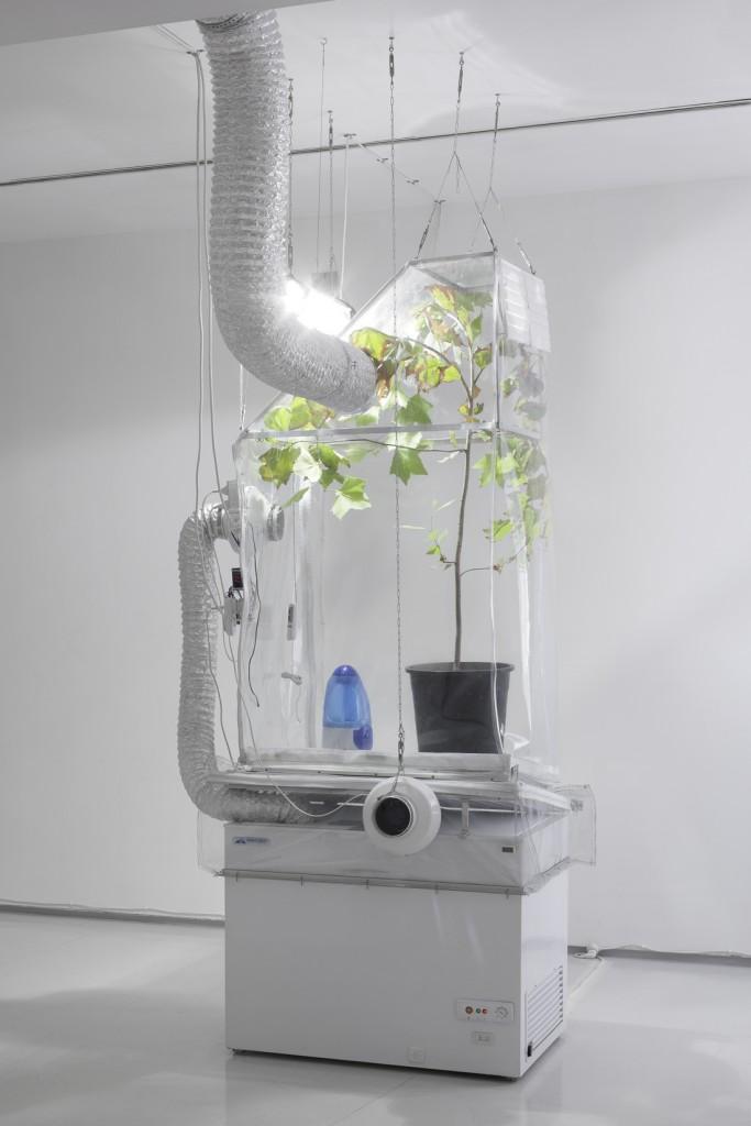 Ed, installation view, Noga Gallery of Contemporary Art, 2012
