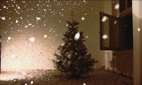 Four Seasons, Still from Video, 2009