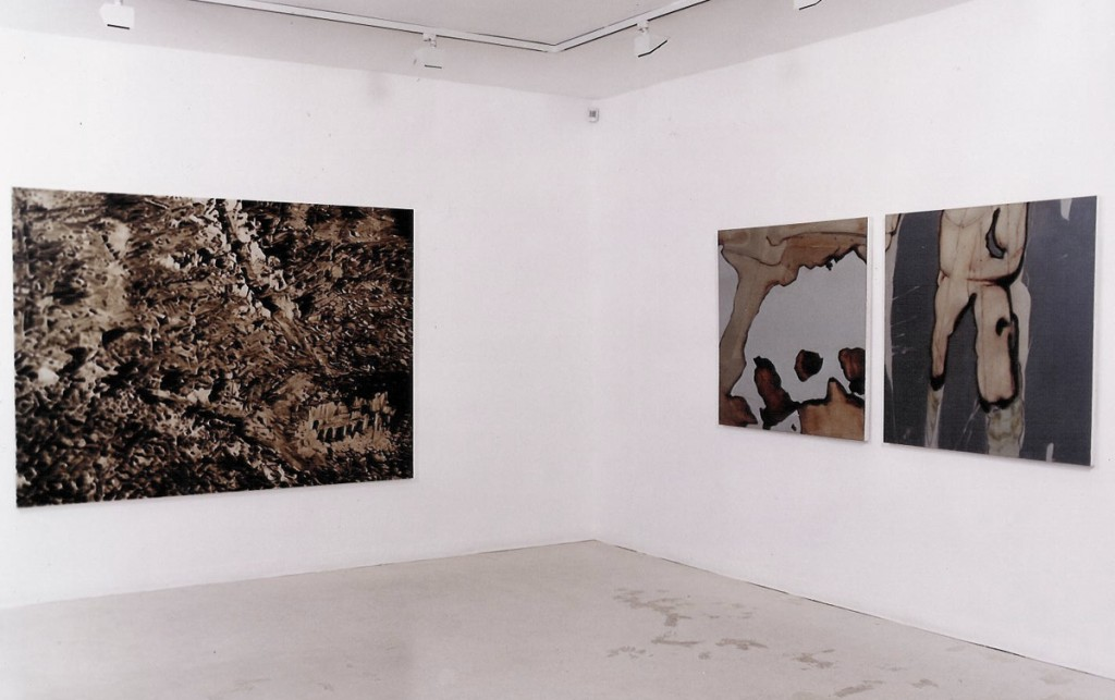 Gilad Efrat New works, Exhibition view, Noga Gallery of Contemporary Art, 2002