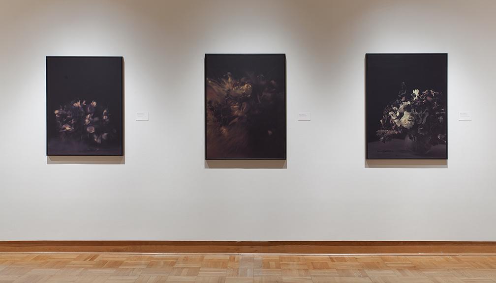 Ori Gersht, Lost in Time, Installation View, Santa Barbara Musuem, 2011