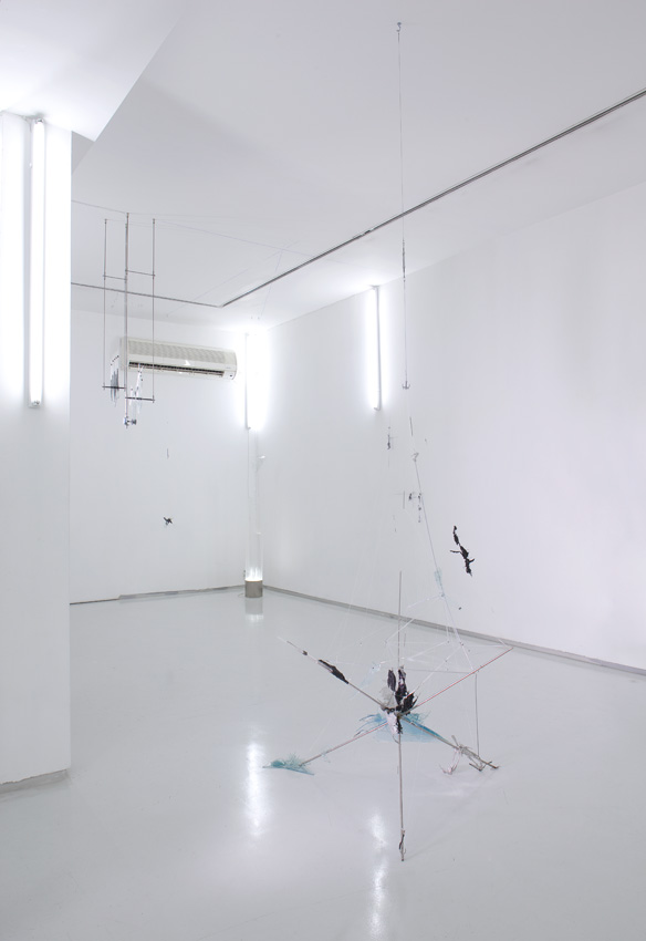 -80, Installation view, Noga Gallery of Contemporary Art, 2009