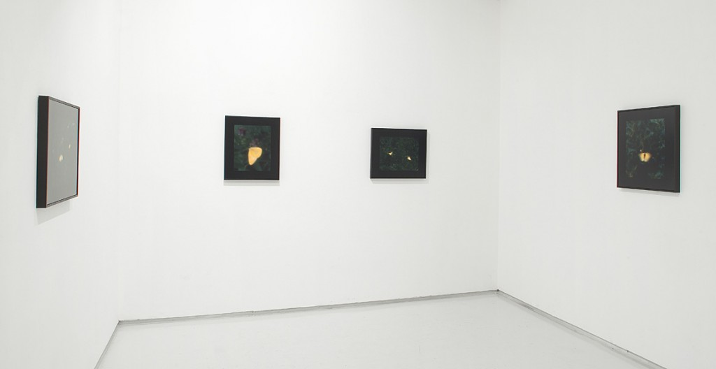 It could have been otherwise, Exhibition view, Noga Gallery of Contemporary Art, 2010