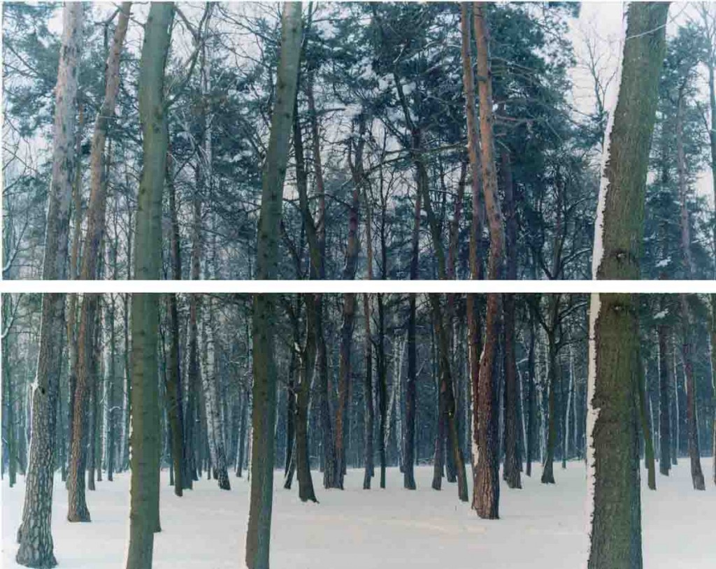 Three Winters 2, c-print, 150x180cm, 2005