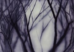 Violette Forest, Oil on Canvas, 240x110cm, 2014