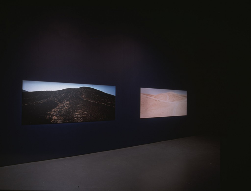 Art now, installation view, Tate Britain, 2002