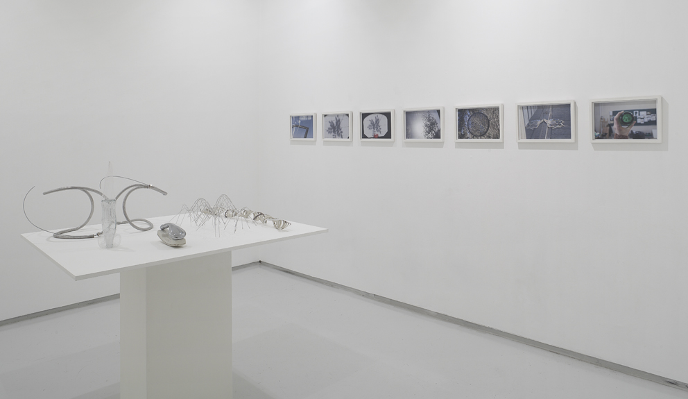 Daily News, Installation view, Noga Gallery of Contemporary Art, 2011