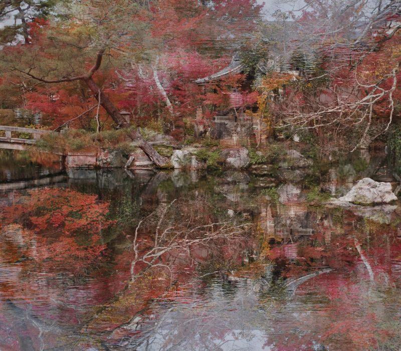Ori Gersht, floating world #02, 170x152cm, 2016