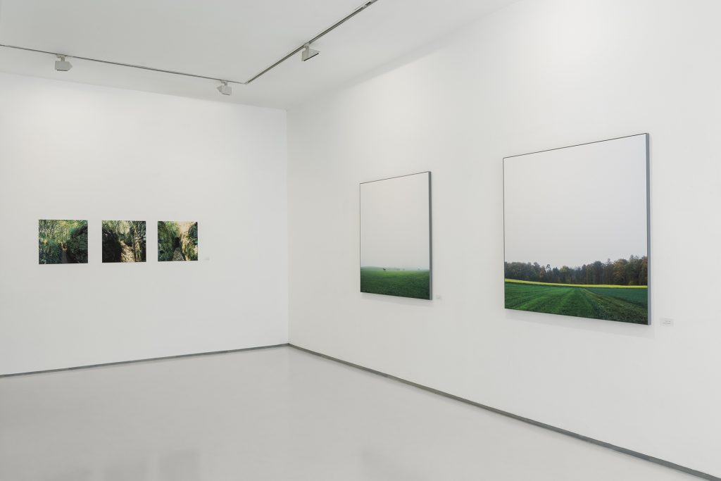 Ghosts of others, installation view, Noga gallery, 2019