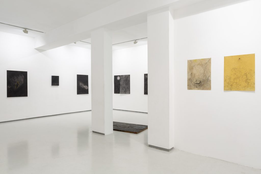SHAAR | Installation View | Noga Gallery | 2020